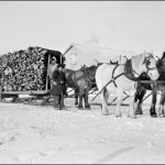 Hauling wood that was used for heating and cooking in the school at Norway House, c 1929-32. (UCCArchivesWpg N112)